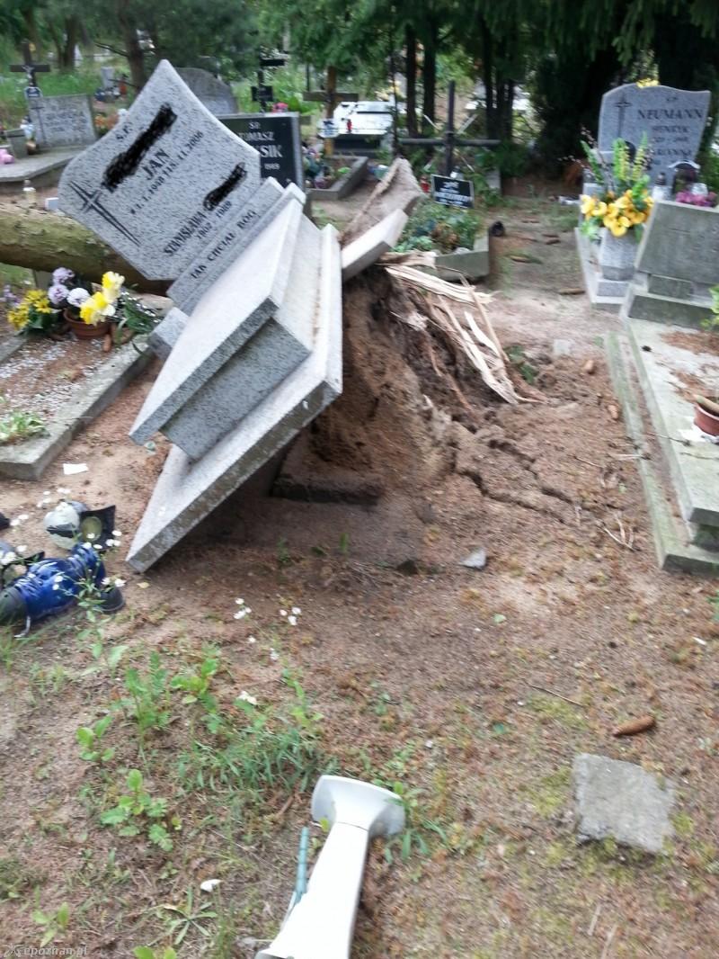Ogromne Straty Na Cmentarzu Junikowo Przewroconych Nawet 400 Drzew